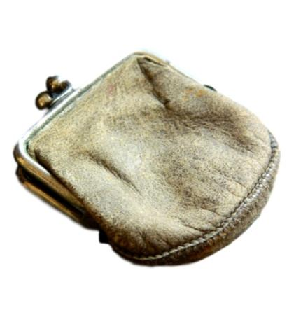 pliny's purse